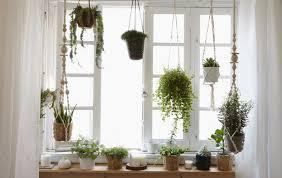 fenstergarten gestalten für pflanzenfreunde ikea deutschland