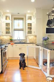 Dog Houses In Kitchen