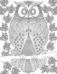 AmazonSmile Owls Coloring Book A Stress Management For Adults Adult