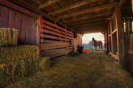 Barns And Buildings – Todd Sadowski Photography Scary Dairy Barn 2 By Puresoulphotography On Deviantart Art Prints Lovely Wall For Your Farmhouse Decor 14 Stunning Photographs That Might Inspire A Weekend Drive In Mayowood Stone Fall Wedding Minnesota Photographer Memory Montage Otography Blog Sarah Dan Wolcott Oregon Rustic Decor Red Photography Doors Photo 5x7 Signed Print The Briars Wedding Franklin Tn Phil Savage Charming Wisconsin Farmhouse Sugarland Upcoming Orchid Minisessions Atlanta Child