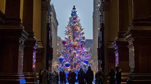 Philly Holiday Tree At City Hall