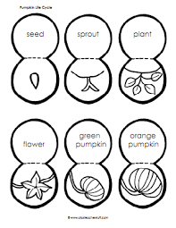 Books About Pumpkins For Toddlers by Pumpkin Pumpkin By Jeanne Titherington Lesson Plans Activities