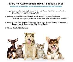 amazon com nwell pets dog and cat brush for shedding medium