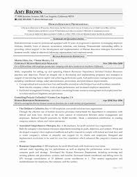 10 Hr Professional Resume Sample | Resume Samples