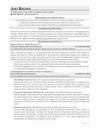 10 Hr Professional Resume Sample | Resume Samples