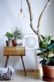 fototapete wohnzimmer design vintage und moderne mischung mit vielen pflanzen