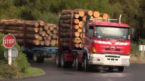 Just The Job - Forestry Truck Driver - YouTube Trucking Jobs Mn Best Image Truck Kusaboshicom Cdllife Dominos Mn Solo Company Driver Job And Get Paid Cdl Tips For Drivers In Minnesota Bay Transportation News Home Bartels Line Inc Since 1947 M Miller Hanover Temporary Mntdl What Is Hot Shot Are The Requirements Salary Fr8star Kivi Bros Flatbed Stepdeck Heavy Haul John Hausladen Association Ppt Download Foltz J R Schugel