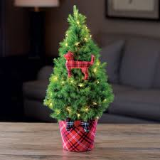 Plantable Christmas Trees Nj by Live Decorated Tabletop Christmas Trees From Jackson U0026 Perkins