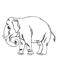 Detail Old Elephant Coloring Pages For Preschool 2013