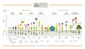 Eden Organic Pumpkin Seeds Where To Buy by Planting Instructions U0026 Cultural Information