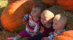 Pumpkin Patches Maryland Heights Mo by Warm Weather Is Driving Crowds To Go To Pumpkin Patches Fox2now Com