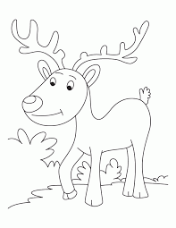 Happy Caribou Coloring Pages