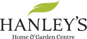 Christmas Tree Saplings For Sale Ireland by Cork U0027s Premier Garden Center Hanleys Garden Centre