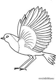 Robin Coloring Page Find Out Your Favorite Sheets In BIRD Pages Enjoy With The Colors Of Choice Print This