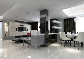 Kitchen And Living Room Partition Ideas