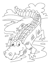 To Print Alligator Coloring Page 44 For Your With