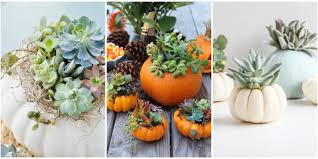 Mayfield Pumpkin Patch by Pumpkin Planters Are The Ultimate Fall Porch Accessory