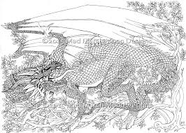 New Dragon Adult Colouring 5 Page Pdf Booklet Now Available