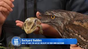 Backyard Buddies | Studio 10 - YouTube Opinion On Car Lifts Cvetteforum Chevrolet Corvette Forum The Worlds Best Photos Of Backyard And Mate Flickr Hive Mind Look At This Backyard Buddies Zulily Today Zulily Outdoor Youtube Lot Of 8 Bunny Plates Crestley Collection For Free Embroidery Designs Cute Myphotography Night Owl Poetry Dorinda Duclos Locomotive Ghost Shawnwagarcom Unique Architecturenice Pin By Pam Smith Animals Pinterest Workshop Detail Buddies Skyspy Images Video