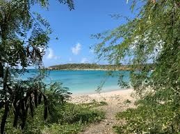 100 Vieques Puerto Rico W Hotel Its Time To Visit