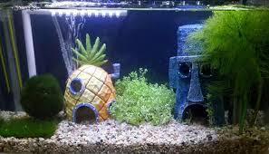 Spongebob Fish Tank Ornaments by Spongebob Squidward Tentacles Eugene H Krabs Pineapple House