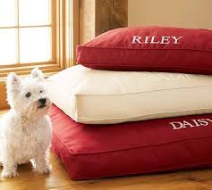 Pottery Barn Dog Bed by Westie Lavender Parking Page 2