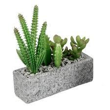 kakteen kaktus landschaft wandtattoo wandsticker