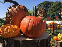 Pumpkin Patch Columbus Ohio 2017 by Home Page Lohstroh Family Farms