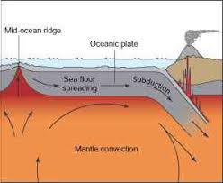 Sea Floor Spreading Subduction Animation by Sea Floor Spreading Life On The Ocean Floor Thinglink