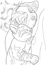 Creative Haven Lovable Cats And Dogs Coloring Book 5 Sample Pages