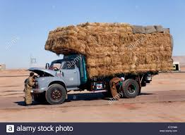 Hay Lorry Stock Photos & Hay Lorry Stock Images - Alamy Hay For Sale In Boon Michigan Boonville Map Outstanding Dreams Alpaca Farm Phil Liske Straw Richs Cnection Peterbilt 379 At Truckin Kids 2013 Youtube Bruckners Bruckner Truck Sales Lorry Stock Photos Images Alamy Mitsubishi Raider Wikipedia For Lubbock Tx Freightliner Western Star Barmedman Motors Cars Sale In Riverina New South Wales On Economy Mfg Dennis Farms Equipment Auction The Wendt Group Inc Land And
