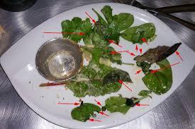 cuisine pourrie le petit pot de camenbert à la normande et sa salade pourrie