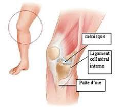douleur interieur genou course a pied blessures du cycliste