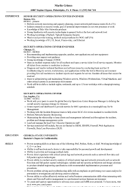 Download Security Operations Center Resume Sample As Image File