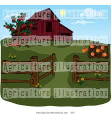 Silo Christmas Tree Farm Pumpkin Patch by Royalty Free Stock Agriculture Designs Of Farms