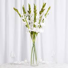 Tableclothsfactory 6 Pcs Gladiolus Single Stems For Wedding ... Home Decor Spectacular Table Cloth Inspiration As Your Ding Kitchen Tablecloths Factory Coupon Code Sears Promo Code 20 Sainsburys Online Food Shopping Vouchers The Story Of Linen Tablecloth Has Covers Depot Bb Crafts Coupons Codes Proderma Light Coupon Walmart Cheap Whole Stand Up To Cancer Good Home Store Wow Factory 2019 Decorating Cute Ideas With