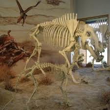 Agate Fossil Beds National Monument by Agate Fossil Beds National Monument Harrison 2016 2017 Bon Voyage