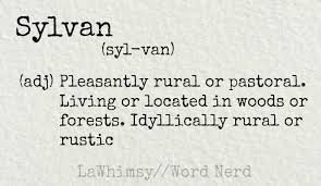 Sylvan Definition Word Nerd Via Lawhimsy