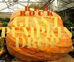 Pumpkin Patch Utah by Special Event Red Rock Giant Pumpkin Drop U2013 Staheli Family Farm