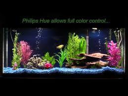 i retrofitted a philips hue lightstrip plus into my aquarium