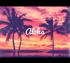 Aloha Pictures Images Graphics And Comments With Background Tumblr Photography Beach