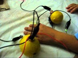 lemon lightbulb