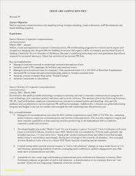 Resume Titles Examples That Stand Out Luxury What Is A Title Of