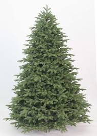 8 Foot Cypress Spruce Artificial Christmas Tree Unlit