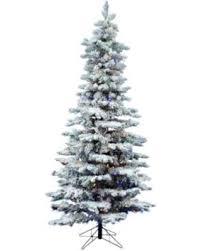 Vickerman 65 Flocked Utica Fir Slim Artificial Christmas Tree With 300 Multi Led Lights