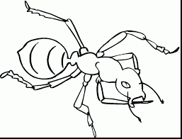 Excellent Ant Coloring Pages Worksheets With Page For Farm