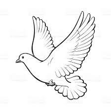White Dove clipart flight drawing 2 382