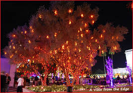 Tumbleweed Christmas Tree Pictures by A View From The Edge Merry Christmas Mormon Style