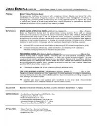 Nursing Resume Skills Examples Student Summary Assistant Cover Letter