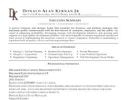 Resume Synopsis Example Sample Executive Summary For Web Developer Picture